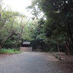 名古屋市野鳥生息調査 36 2020.10.24