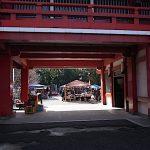 大須骨董市 2020.12.18